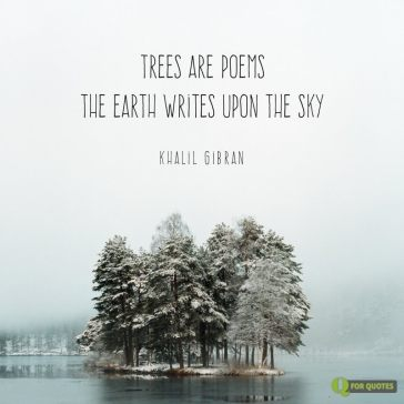 Quote-about-trees-by-Khalil-Gibran
